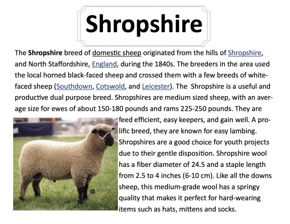 breed-sheep-shropshire