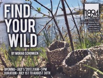 Find Your Wild.jpg