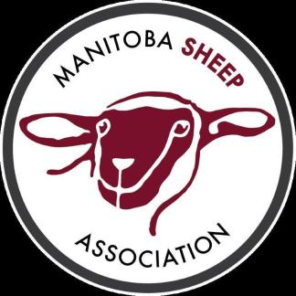 MB Sheep Logo.gr.Eng.300res (2)